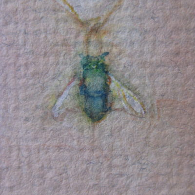 Watercolour on handmade paper..detail