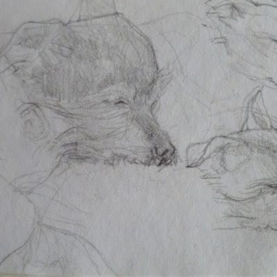 Pencil on Paper 15cm x 20 cm approx